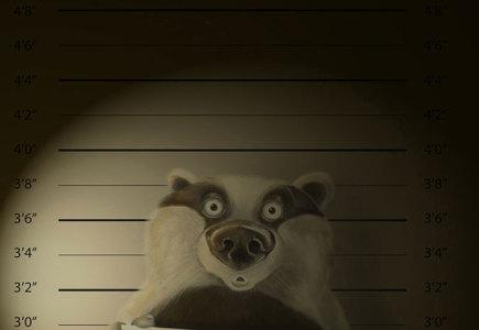 Joel Langlois - Illustrator - Badger