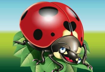 Mark Taylor - Ladybird