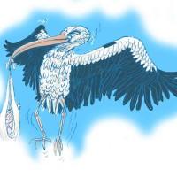 Paul Margiotta - Strugglin'Stork