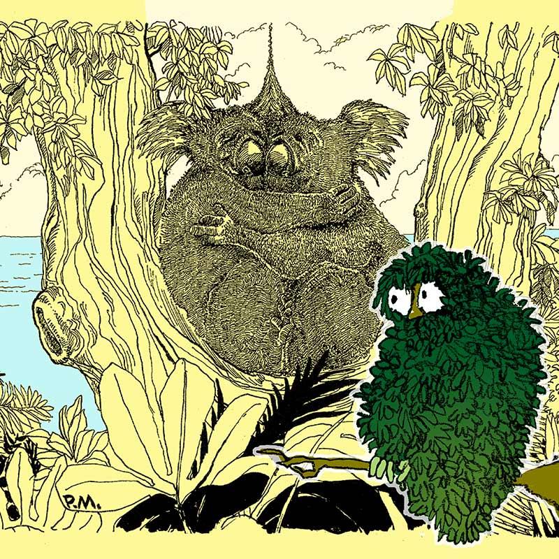Paul Margiotta - Illustrator - Leaf Owl & The Cuddling Koalas