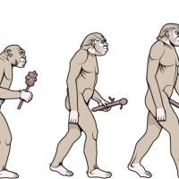 Richard Bowring - Illustration for a chain restaurants