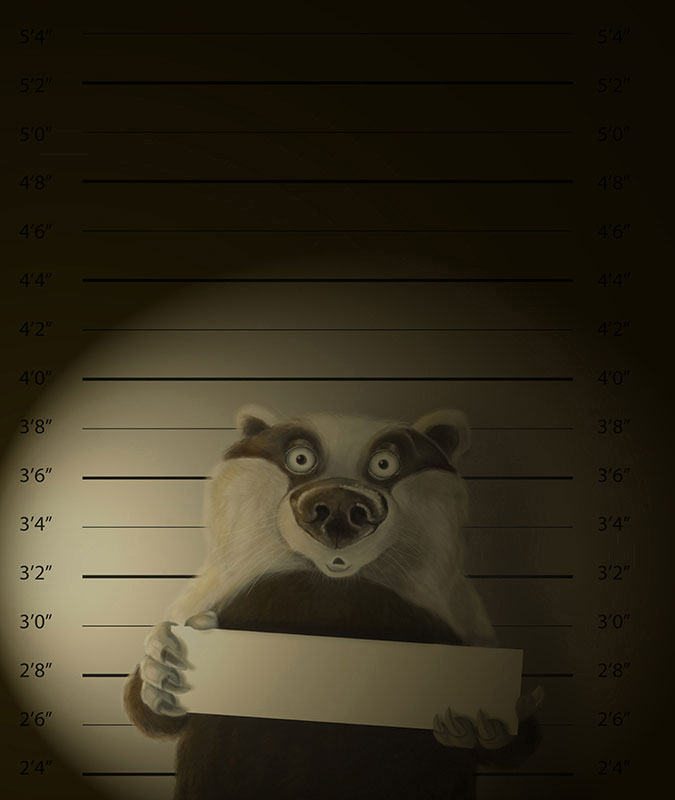 Joel Langlois - Illustrator - Badger