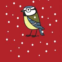 Joel Langlois - Illustrator - Garden Birds Xmas Blue Tit