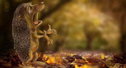 Joel Langlois - Illustrator - Hedgehog