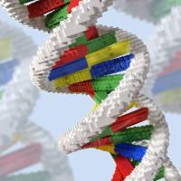Jon Heras - Genetic engineering, conceptual artwork