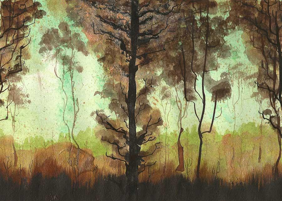 Naomi Chamberlain - Cambridge Illustrators - Nature #1